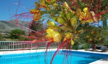 Dubrovnik, Trebinje, kuća, bazen, smještaj, nekretnina