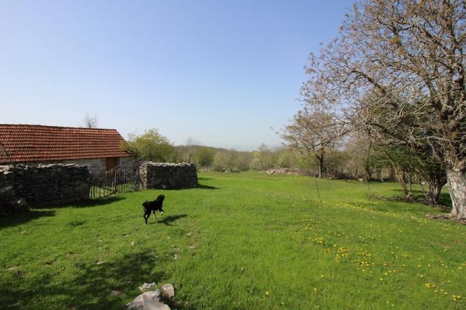 Bileća, Baljci, Bosnia and Herzegovina, ,Kuća - prodaja,Prodaja, imanje