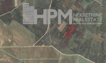 prodaja, poljoprivredno zemljište, Popovo Polje, Veličani