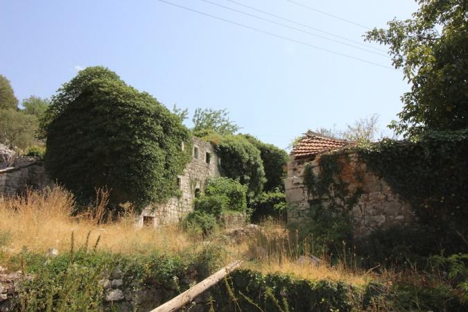 prodaja, nekretnine, Trebinje, Donje Čičevo, poljoprivredno zemljište, ruinirana kuća, stara kuća,