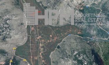 prodaja, poljoprivredno zemljište, Popovo Polje, Ravno, Strujići, voćnjak šipaka, plantaža šipaka